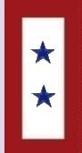 Moms Flag