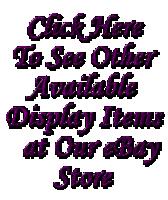 eBay Display Store Badge